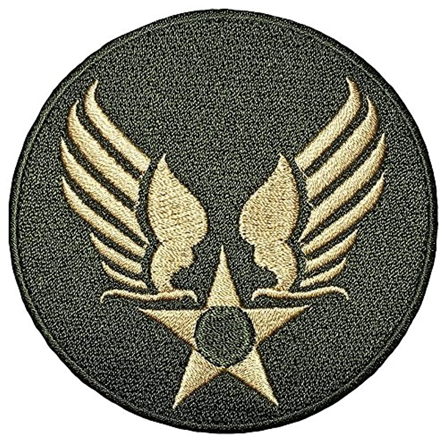 US AIR FORCE STAR CIRCLE EAGLE WING logo Insignia Military Army United Logo size 3 inch. Jacket Vest shirt hat blanket backpack T shirt Patches Embroidered Appliques Symbol Badge Cloth Sign Costume