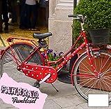 ilka parey wandtattoo-welt Fahrradaufkleber Set Punkte dots groß Fahrradsticker Aufkleber Fahrrad Design M681 - ausgewählte Farbe: *Weiß*