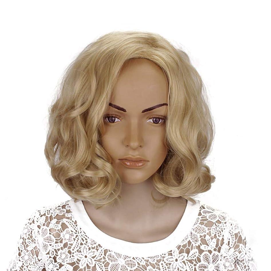 講義なかなか制限されたMayalina ブロンド14インチ女性ボボカーリーと合成部分斜め前髪コスプレ衣装毎日のパーティー用ウィッグ女性用合成かつらレースかつらロールプレイングかつら (色 : Blonde, サイズ : 14