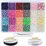 EuTengHao 6000pcs Glass Seed Beads Small Craft Beads Small Beads for DIY Bracelet Necklaces Crafting Jewelry Making Supplies with Two 0.8mm Clear Bracelet String (4mm, 250 Per Color, 24 Colors)
