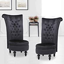 High Back Accent Chair Set of 2, Throne Chair Velvet Chair with Storage for Bedroom Living Room Dressing Table Seat Wood L...