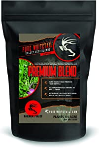 Pure Whitetail Premium Blend – Select Seed Blends – Whitetail Deer Food Plot Seed All Season High Protein Food Source Attractant (5 lbs)