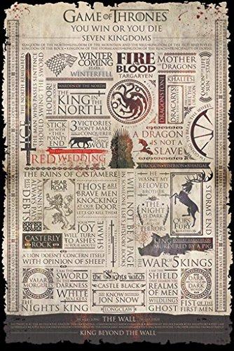 Póster Games of Thrones - Infografía (61cm x 91,5cm)