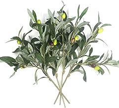 Best faux olive plant Reviews