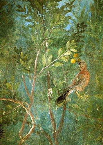Kunstdruck/Poster: AKG Anonymous Vogel i Zitronenbaum Fresko Villa Livia - hochwertiger Druck, Bild, Kunstposter, 60x85 cm