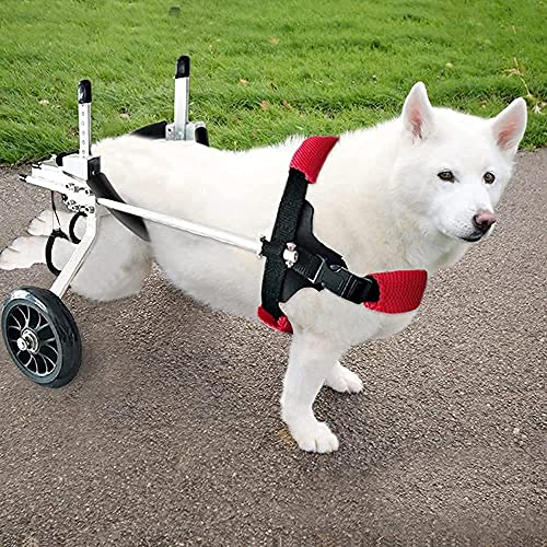 Sillón de ruedas para perro, silla de ruedas para perro para compañía para perro que no se pelen. Se sirva de sus patas traseras, soporte auxiliar paralizado, perro discapacitado, llegue en 3 días (L)