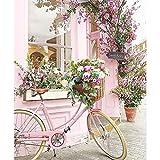 TOOGOO Dpf DIY Bicicleta Flor Pintura De Diamante Cuadrado 5D Artesanía Puntada De Cruz Bordado De Diamantes Pintura De Pared Decoración del Hogar