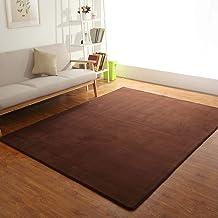 Coral Carpet,Indoor Area Rug Simple Sofa Side Children mat Easy to Clean Living Room Bedroom Floor Machine Washable Soft s...