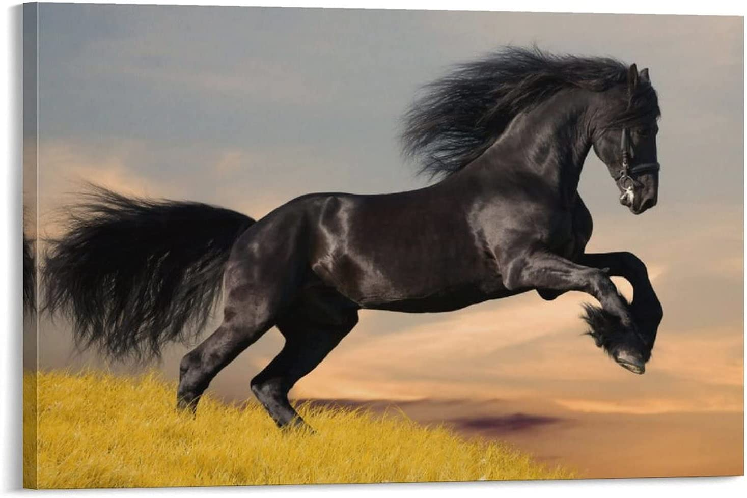 freebrand Adorable Animal Wild Horse Poster Under New popularity blast sales 1 Mo Room Children's