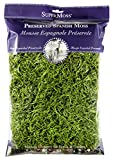 SuperMoss (26912) Spanish Moss Preserved, Grass, 8oz (200 cubic inch)...