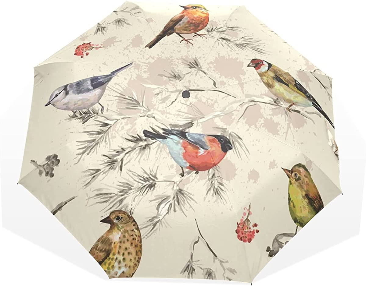 Ink Bird Umbrella Automatic Windproof Umbrellas Folding Popular depot Compact