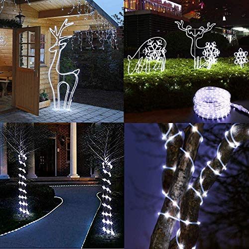 LiyuanQ Solar String Lights Outdoor Rope Lights, 2 Pack 8 Modes 100 LED Solar Powered Outdoor Waterproof Tube Light Copper Wire Fairy Lights for Garden Fence Yard Party Wedding Decor (Cool White)