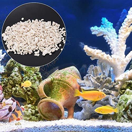 Sable d'os de corail, sable d'os de corail de réservoir de poissons utile pour l'aquarium pour l'eau de mer pour l'aquarium pour l'eau douce