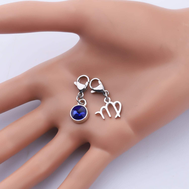 FAADBUK 12 Zodiac Constellation Zodiac Stainless Steel Clasp Clip on Charm Zodiac Sign with Birthstone Charm for Bracelet Necklace Keychain