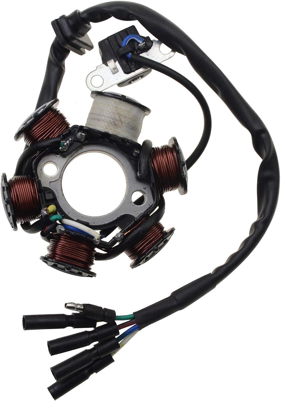 WOOSTAR Estator Magneto 6 Bobinas 5 Cable Reemplazo para GY6 Taotao 50cc 70cc 90cc 110cc 125cc Scooter Ciclomotor Go Kart ATV 4 Wheeler Dirt Pit Bike