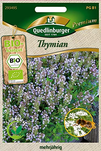 Quedlinburger Thymian (Bio-Thymiansamen)