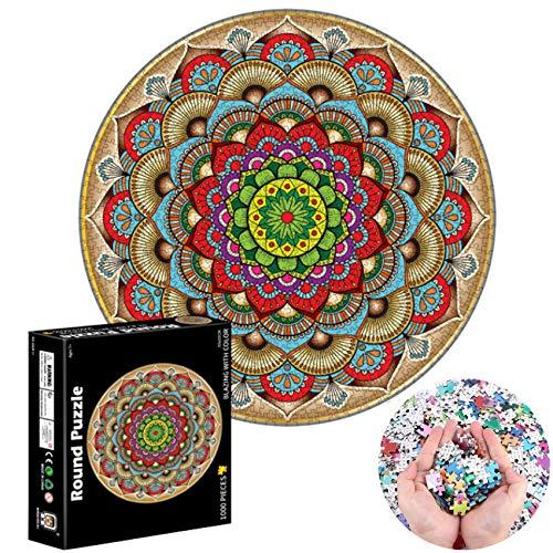 1000 Teile Runde Puzzle,Legespiel Puzzle,Regenbogen Puzzle,Erwachsenenpuzzle,Puzzle Kreative Erwachsene,Puzzle Pädagogisches,Geschicklichkeitsspiel für die Ganze Familie