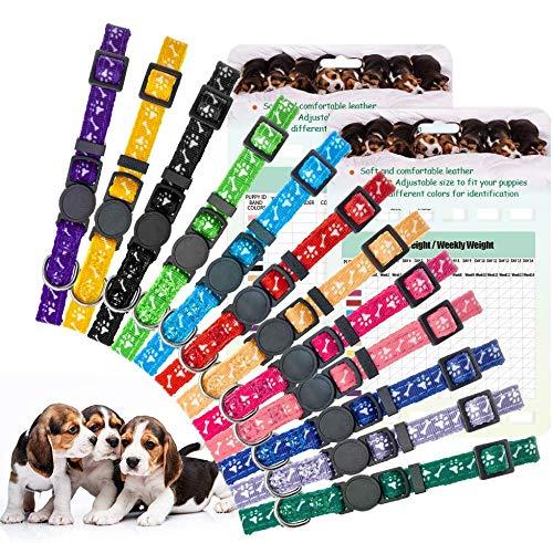 EXPAWLORER Welpen-ID-Halsband – Wurfhalsbänder für Welpen mit Aufzeichnungstabellen, verstellbare Identifikation, Sicherheitshalsbänder mit Glöckchen für neugeborene kleine Hunde, Haustiere