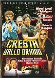 CRESTA DEL GALLO GRINGO