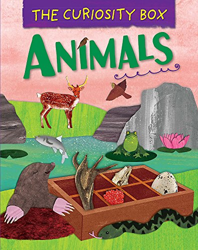 Animals (The Curiosity Box, Band 5)