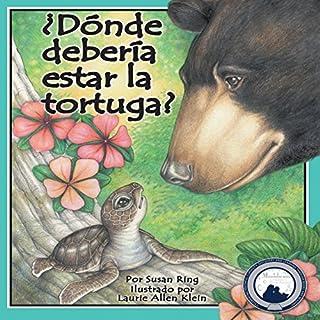 ¿Dónde debería estar la tortuga? [Where Should Turtle Be?] audiobook cover art