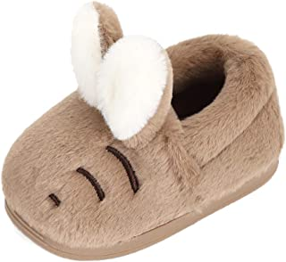 Toddler Girls Winter Slippers Plush Warm Slippers for Boys Cartoon Animal Slippers Little Kids House Shoes