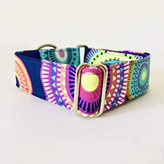 4GUAUS Collar Martingale para Perros - Modelo Aurora Boreal