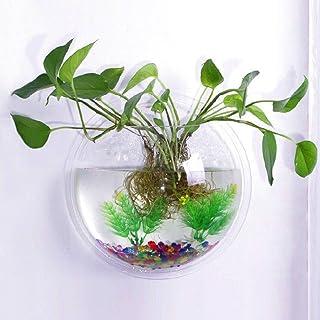 1 Vaso Vetrineinrete/® Porta pianta a Sospensione con 1 o 2 vasi in Vetro per Piante Fiori portapianta fioriera sospesa Arredamento Rustico Shabby Chic 6866