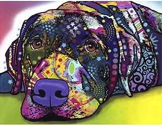 24x34cm Animal Dog 5d DIY Diamond Painting Diamond Embroidery Diamond Mosaic Cross Stitch Stickers Mosaic kit Watercolor Labrador
