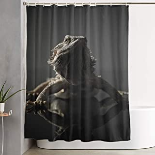 NiYoung Cool Bearded Dragon Lizards Animal Black Waterproof Polyester Shower Curtain with Hooks 60''W X 72''H for Decorative Bathroom Curtain