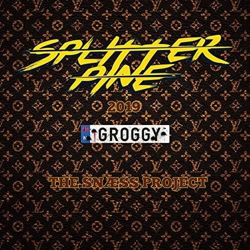 Groggy & The Snæss Project