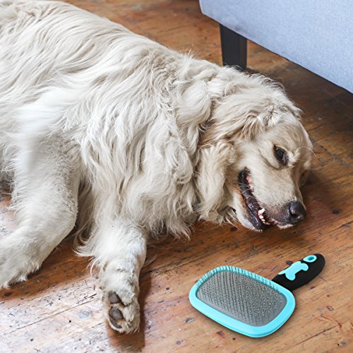Glendan Dog Brush