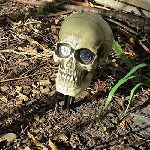 Buried Skeleton Halloween Yard Prop with Lighted Flashing Head by All Hallows Eve
