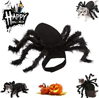 Halloween Pet Spider Costume Cat for Dogs and Cats Dress Party Simulation Spider