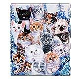Dawhud Direct Kitten Collage Super Soft Plush Fleece Throw Blanket by Jenny Newland