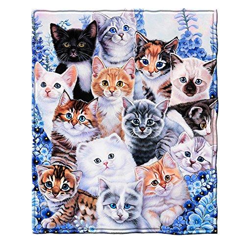 Dawhud Direct Super Soft Full/Queen Size Plush Fleece Blanket by Jenny Newland, 75