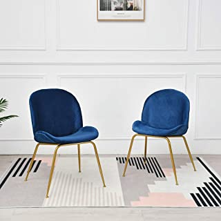 Dekea Dining Room Chairs Beetle Velvet Upholstered Living Room Armless Side Chair with Metal Legs for Kitchen, Bedroom Set of 2, Blue