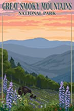 Great Smoky Mountains National Park, Tennessee - Bear and Cubs with Flowers (9x12 Art Print, Wall Decor Travel Poster)