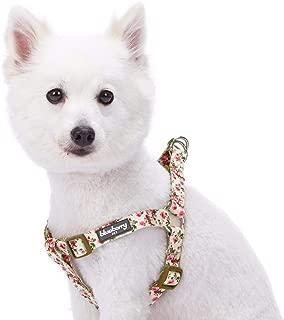 Best martha stewart dog harness Reviews