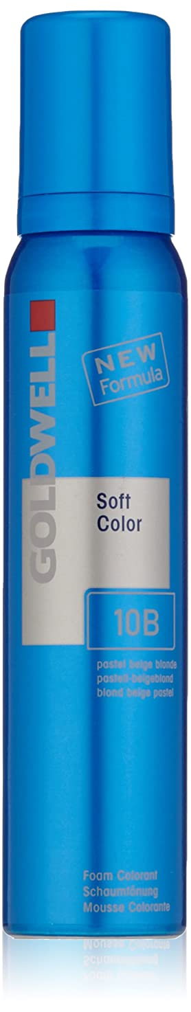 富天窓車Goldwell Coloranceソフトカラーフォーム、パステルベージュ10bは、4.2オンス ブロンド