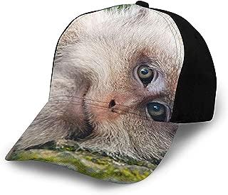 JOSEPH TINDALL Baseball Cap for Men and Women - Classic Comfortable Adjustable Flat Cap for Recreation-Cheeky Monkey Jungle Black