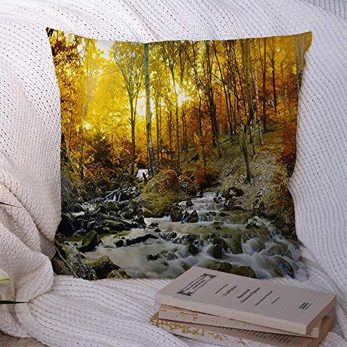 Cuscini Divano Federa Foglia Colorful Beauty Raster Small Abstract Ornate Nature Little Bloom Blossom Botanical Classic Soft Cushion Case Federa per Cuscino