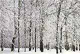 Fondo de fotografía de Interior Fondo de fotografía de Navidad Fondo de Vinilo Accesorios fotográficos A37 9x6ft / 2.7x1.8m