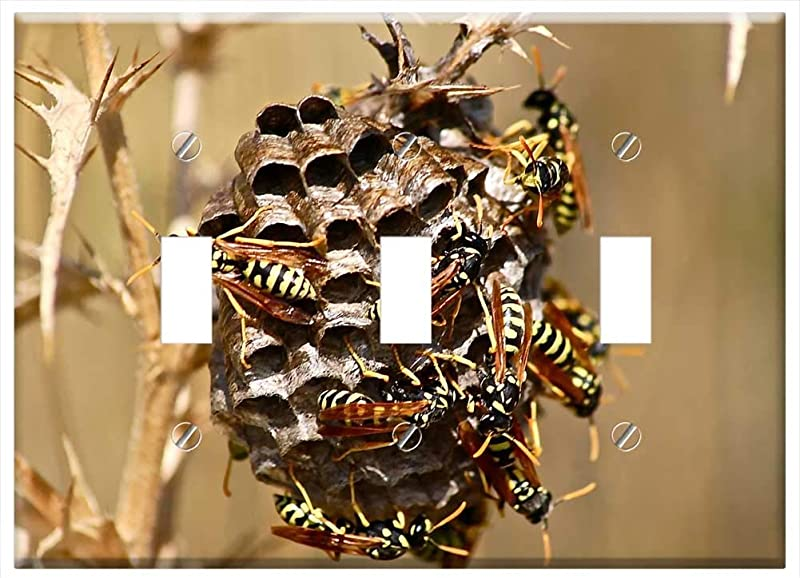 Switch Plate Triple Toggle It Wasp Swarm Diaper Insect Nature