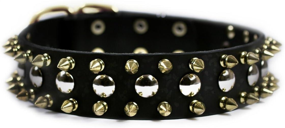 Dean Tyler Golden Spike Dog Collar Buc Spikes with Brass free Choice shipping Studs