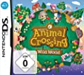 NINTENDO DS- Animal Crossing Dual Screen - Game