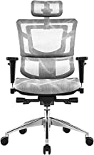 Ergonomic Office Chair Mesh Chair Heavy Duty Office Chair with Adjustable Headrest, 2D Armrest and Lumbar Support, Tilt Fu...