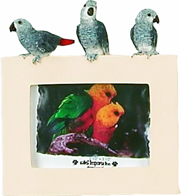 E&S Pets 3531610 Small Bird Frames