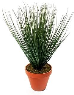 Highland Dunes Artificial Floor Foliage Grass in Pot
