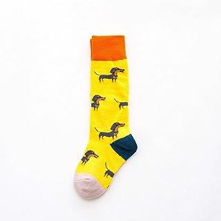 MAITAIN, MAITAIN Calcetines de algodón para niños con dibujos animados de animales de cocodrilo, dinosaurio bordado de impresión calcetines para niños niñas niños calcetines 5-7T B